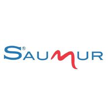 Saumur (référence)