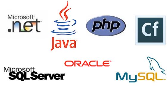 Principales technologies : .NET, Java, php, Cf, MySQL, SQL Server, Oracle
