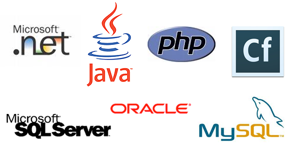 Principales technologies : .NET, Java, php, Cf, MySQL, SQL Server, Oracle